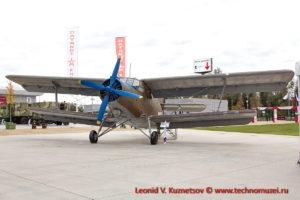 Самолет Ан-2 в Парке Патриот