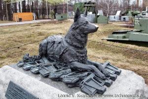 Памятник фронтовой собаке в Музее на Поклонной горе