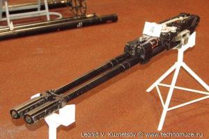 """Авиационная пушка ГШ-23 на выставке """"Операция в Сирии"""" в парке Патриот"""