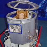 Космическая капсула для обезьян в музейном комплексе парка Патриот