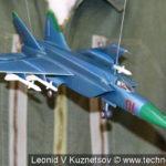 Модель истребителя МиГ-25 в музее войск ПВО в Балашихе