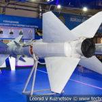 Зенитная ракета комплекса С-75 (модели 11Д и 20Д) в музейном комплексе парка Патриот