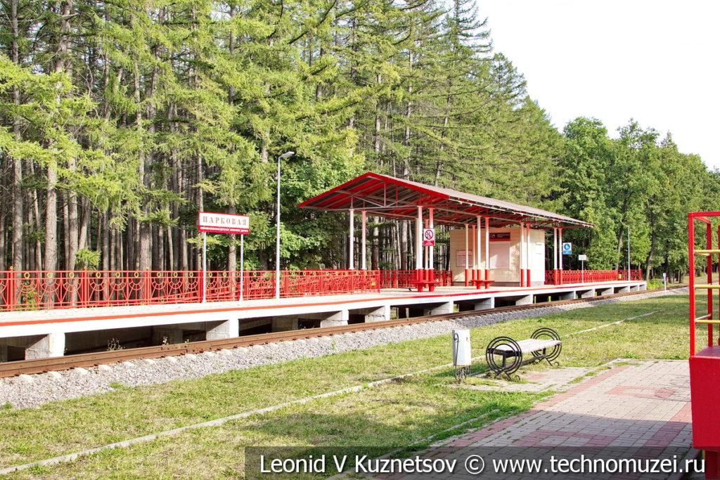 Станция Парковая на Тульской детской железной дороге